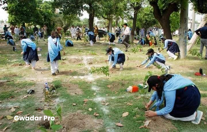 Pak to celebrate Independence Day with tree plantation campaigns